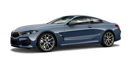 New 2019 BMW 8 Series  | Brooklyn, NY